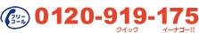 TEL:0120-919-175